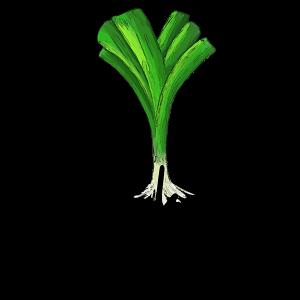 Local Organic Vegetables. Eat Local Muskoka.